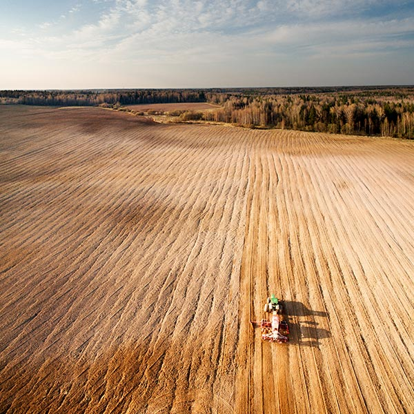 Grandes parcelles = pertes de biodiversité = traitements phytosanitaires