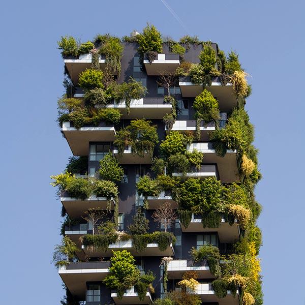 L'immeuble végétalisé, une solution pour plus de nature en ville
