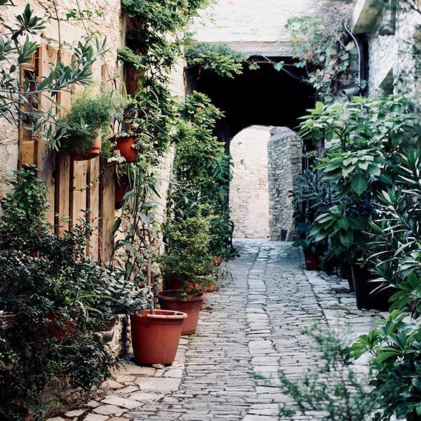 Une rue végétalisée apporte fraîcheur et vie à l'endroit